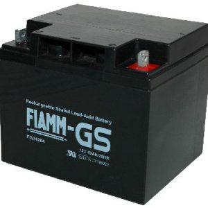 Fiamm FG Standaard  Loodaccu - AGM  12 Volt  FG24204